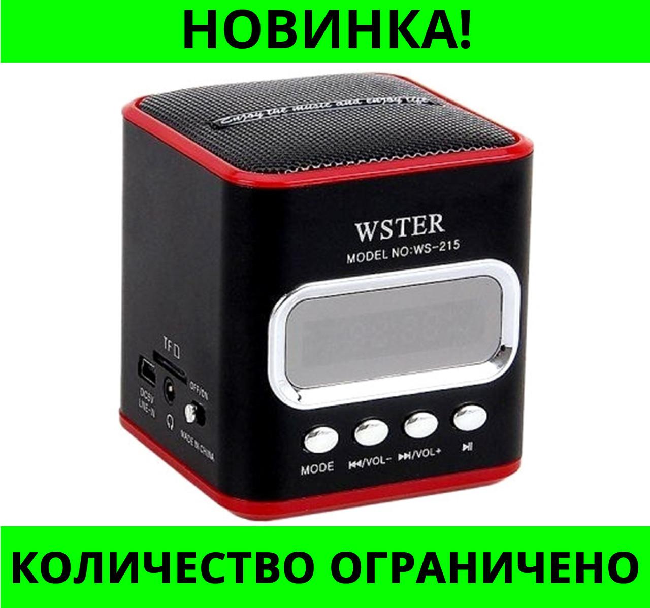 Портативная колонка USB CardReader FM WS-215!Розница и Опт
