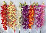 Орхидеи ветка Ангрекоиды   75 см, фото 4
