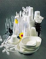 Изготовление пластиковой упаковки ( блистерупаковки, коррексов, подложек, лотков, салатниц, одноразовая посуда, тортниц и других видов упаковки)