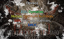 Поступление: BSN, Dymatize, Nutrex, Optimum Nutrition, SAN, Ultimate Nutrition, БИОС.