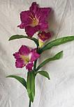 Искусственный  цветок Валлота прекрасная 3 головы, фото 2
