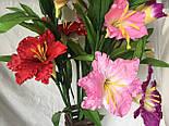 Искусственный  цветок Валлота прекрасная 3 головы, фото 7