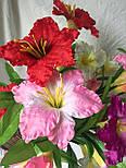 Искусственный  цветок Валлота прекрасная 3 головы, фото 6