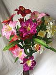 Искусственный  цветок Валлота прекрасная 3 головы, фото 9