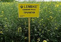 Трумпф семена оз.рапса Лембке  Рапс озимый занимает второе место в структуре посевных площадей масленичных кул