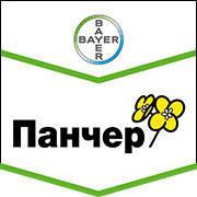 Панчер семена оз.рапса Байер