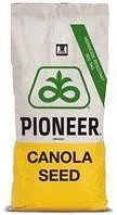 Семена озимого рапса ПР46В21 Пионер (Pioneer PR46W21)