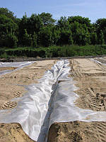 Геотекстиль Тайпар TYPAR SF 56 ширина 5,2 метра длина 100 м.п