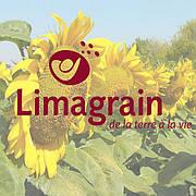 Соняшник Лімагрейн | Limagrain