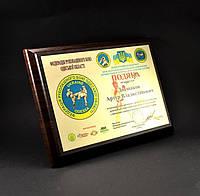 Наградная доска (плакетка) А5