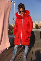 Детское зимнее пальто Мелитта 2  цвет алый