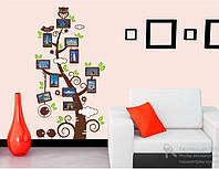 Самоклеющаяся  наклейка  на стену Дерево с рамками для фото  (110х60см)