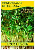 Семена салата Кресс-Салат, микрозелень, 0,5кг