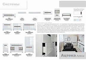 Витрина_REG1W1D/21/9 Ацтека (БРВ-Україна TM), фото 3