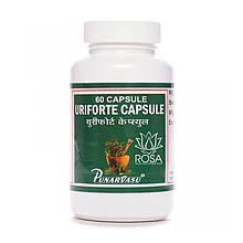 Урифорте (Uriforte, Punarvasu) эффективное средство для лечения заболеваний почек, 60 капсул