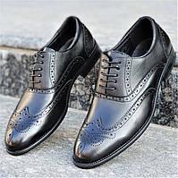 Туфли мужские классические модельные на шнурках натуральная кожа темно синие, почти черные (Код: М1218а)