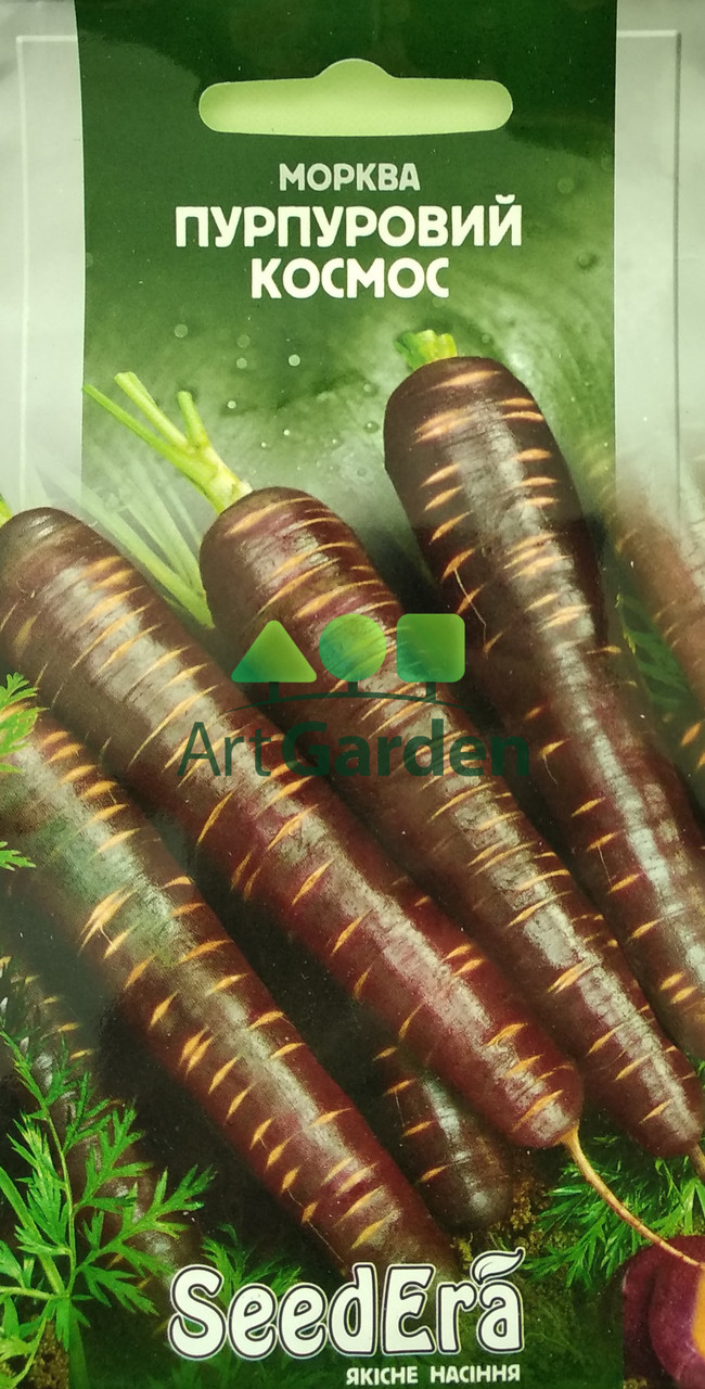 Морква столова Пурпурний космос 100 сем