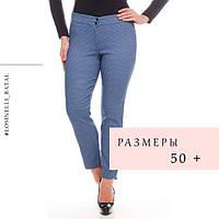 Женские лосины и брюки батальных размеров