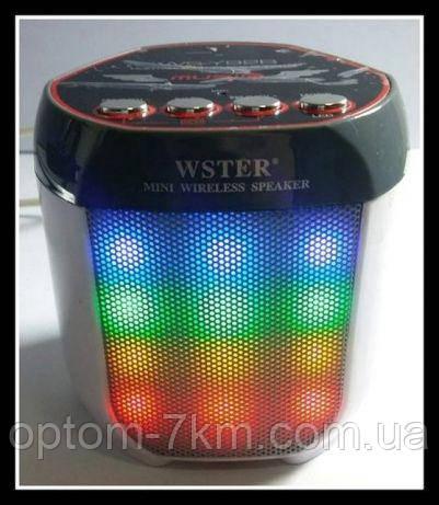 Портативна Акумуляторна MP3 Колонка Speaker Small - WS Y92B Wster am