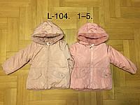 Куртки зимние для девочек оптом, F&D, 1-5 рр, фото 1