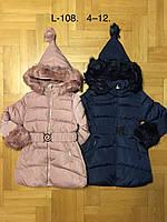 Куртки зимние для девочек оптом, F&D, 4-12 рр