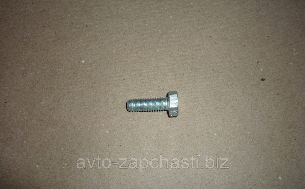Болт 10х 30 подвески ВАЗ 2110-2112 (10 шт) (пакет) (F 13069)
