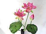 Искусственные цветы лотос 2  головки и бутон., фото 4