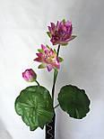 Искусственные цветы лотос 2  головки и бутон., фото 3