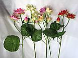 Искусственные цветы лотос 2  головки и бутон., фото 8