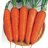 Семена моркови Виктория F1, 500 г, Seminis