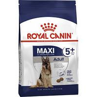 Royal Canin MAXI Adult 5+, 4 кг - Роял Канин для собак старше 5 лет