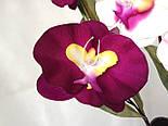 Орхидея искусственная 5 голов,  бархатная , фото 3