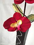 Орхидея искусственная 5 голов,  бархатная , фото 4