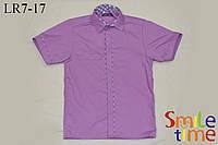 Рубашка на кнопках с коротким рукавом р.122,128,134,140,146,152,158,164 Кант, лиловая