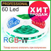 Светодиодная лента  RGB-W/белая (6500K) премиум 5050-60, негерметичная, фото 1