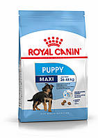 Royal Canin (Роял Канин) Maxi Puppy корм для щенков крупных пород до 15 месяцев, 4 кг