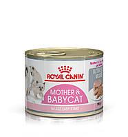 Royal Canin Mother & Babycat Ultra Soft Mousse котята до 4 месяцев, беременные и кормящие кошки