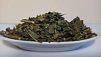 Ежевика сизая(лист)