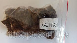 Калган (корень)