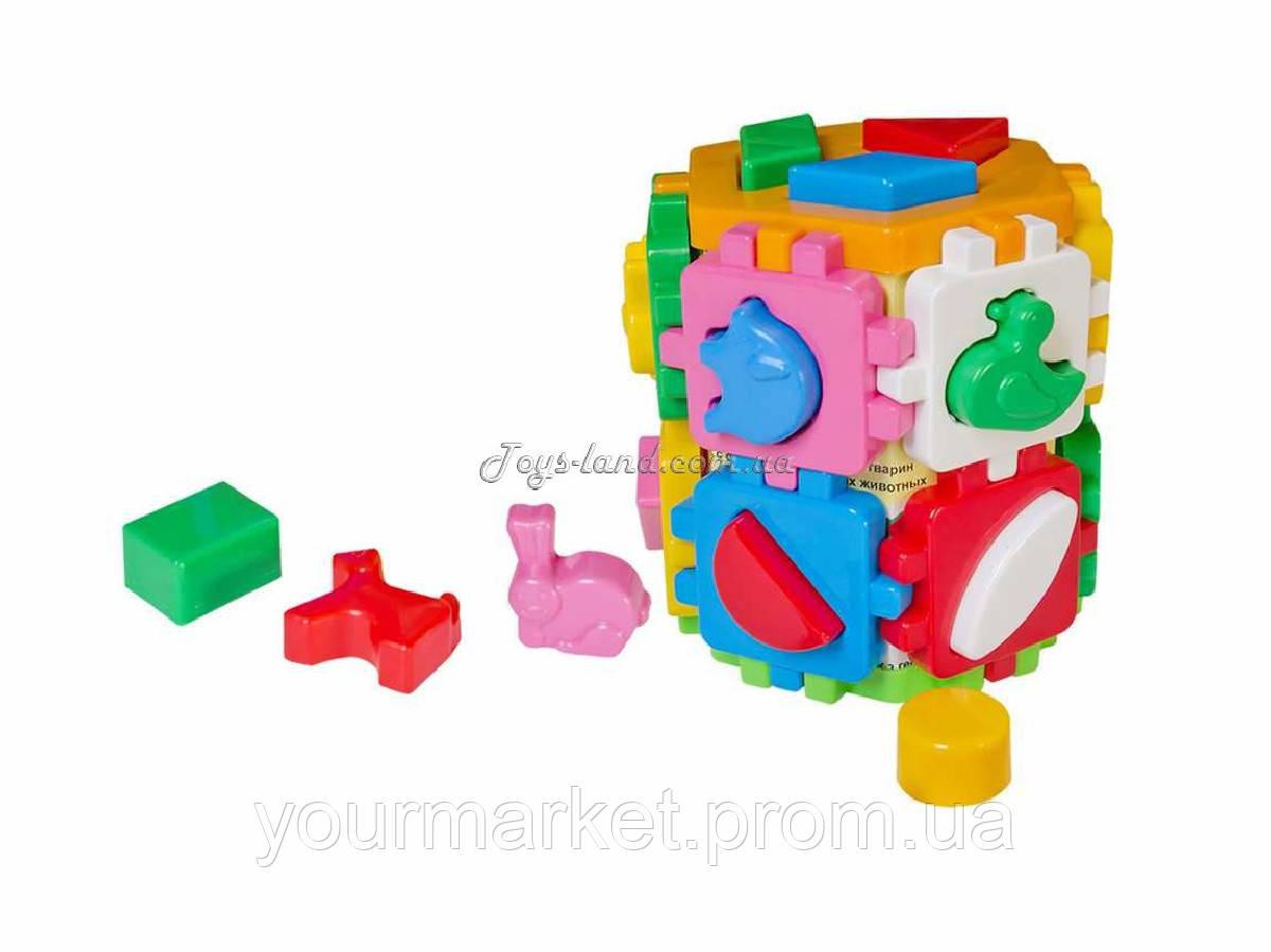 Куб сортер Розумний малюк