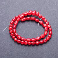 Бусины из Коралла красного галтовка окрашенная d-6-7мм L-39 нитка