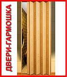 Двери ширма. Для кладовки, шкафчика, коммуникаций  более 6 цветов. Двери ширма (штора), Двери ПВХ., фото 3