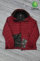 Демисезонная куртка Tiger Force TJBW-50217, мужской пуховик