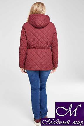 Осенняя женская куртка батальные размеры (р. 48-68) арт. Мейси марсала, фото 2