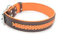 Ошейник для собак кожаный VIP1-4,0/49-60 коричневый + оранжевый