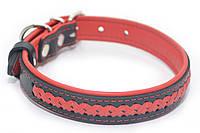 Ошейник для собак кожаный VIP7-2,5/36-45 черный+красный