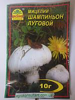 """Сухой зерновой мицелий """"Шампиньон луговой"""" 10 г., фото 1"""