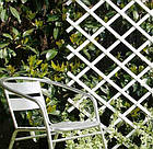 Решетка садовая Trellis 1*2м белая, фото 3
