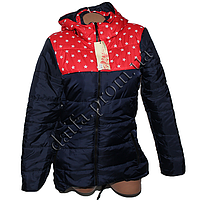 Молодежная демисезонная куртка 689-1 (р-р 44-52) на синтепоне оптом в Одессе.