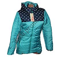 Молодежная демисезонная куртка 689-2g (р-р 44-52) на синтепоне оптом в Одессе.